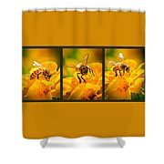 Gathering Pollen Triptych Shower Curtain