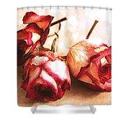 Gathering Rosebuds Shower Curtain