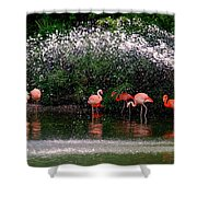 Gathering Together Shower Curtain