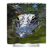 Gator And Dragonfly Shower Curtain