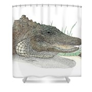 Gator Shower Curtain