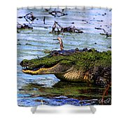 Gator Growl Shower Curtain