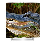 Gator Head Shower Curtain