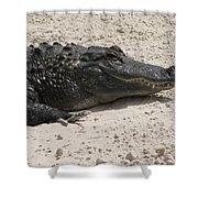 Gator II Shower Curtain