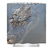 Gator IIi Shower Curtain