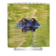 Gator In The Green - Digital Art Shower Curtain