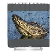 Gator Lean Shower Curtain