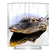 Gator Profile Reflection Shower Curtain