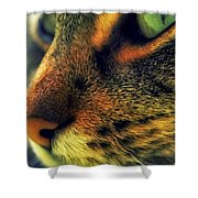 Gatto Shower Curtain