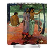 Gauguin: Call, 1902 Shower Curtain