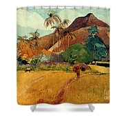 Gauguin: Tahiti, 1891 Shower Curtain