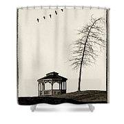 Gazebo And Geese Shower Curtain