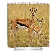Gazelle Mother And Child Shower Curtain