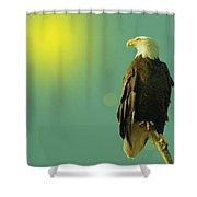 Gazing Sunward Shower Curtain
