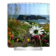 Gazing Toward The Sea Shower Curtain