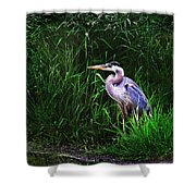 Gbh In The Grass Shower Curtain
