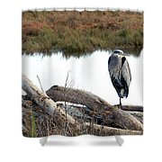 Gbh On Log Shower Curtain