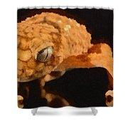 Gecko - Id 16218-130703-9950 Shower Curtain