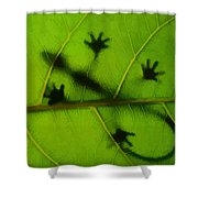 Gecko On A Leaf Shower Curtain