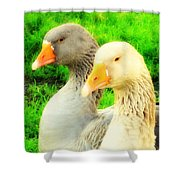 Geese Have Strong Affections For Others In Their Group Shower Curtain