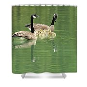 Geese And Babies Shower Curtain