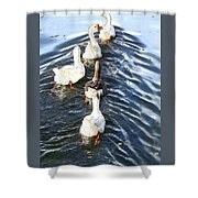 the Geese are leaving Shower Curtain