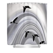 Geese In A Halo Shower Curtain