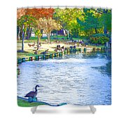 Geese In Pond 3 Shower Curtain