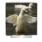 Geese In The Water Shower Curtain