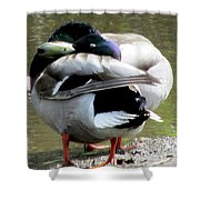 Geese Lovers Shower Curtain