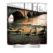 Geese On A Stroll Shower Curtain