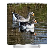 Geese On The Canal   Shower Curtain