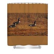 Geese On The Salt Marsh  Shower Curtain