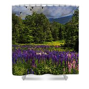 Geese Over Lupine Field Shower Curtain