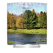 Geese Sanctuary Shower Curtain