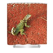 Geico Shower Curtain