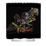Gems And Jewels Shower Curtain