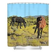 Gems Of Cold Creek Shower Curtain