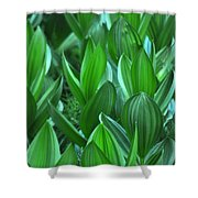 General Grant Meadow Shower Curtain