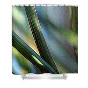 Gentle... Shower Curtain