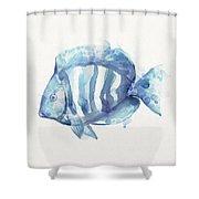 Gentle Fish Shower Curtain