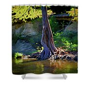 Gentle Giant 122317-1 Shower Curtain