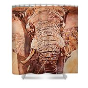 Gentle Giant Shower Curtain