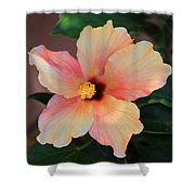 Gentle Hibiscus Shower Curtain