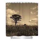 Gentle Landscape Shower Curtain