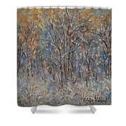 Gentle Snow Shower Curtain