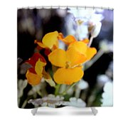 Gentle Yellow And White Shower Curtain