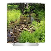 Gently Flowing Brook Shower Curtain