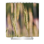 Gently Swaying Shower Curtain