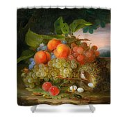 George Forster  Still Life With Fruit And A Birds Nest Shower Curtain